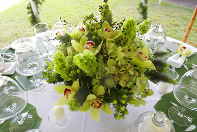 exotic green centerpeice for maui wedding reception