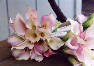 Blue Sky Weddings Maui bouquets of lilies
